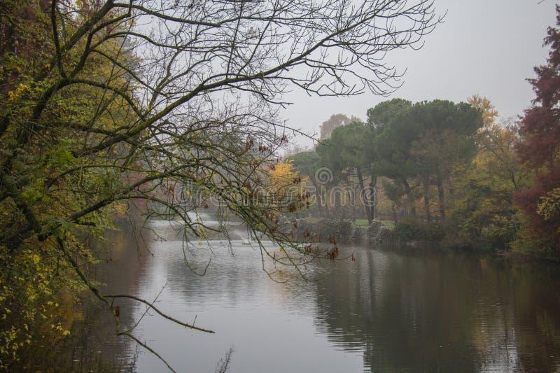 Giardini Margherita Park an einem nebeligen Tag Bologna, Emilia Romagna, Italien stockbild