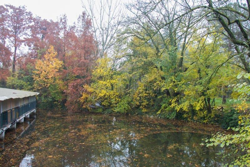 Giardini Margherita Park an einem nebeligen Tag Bologna, Emilia Romagna, Italien lizenzfreies stockfoto
