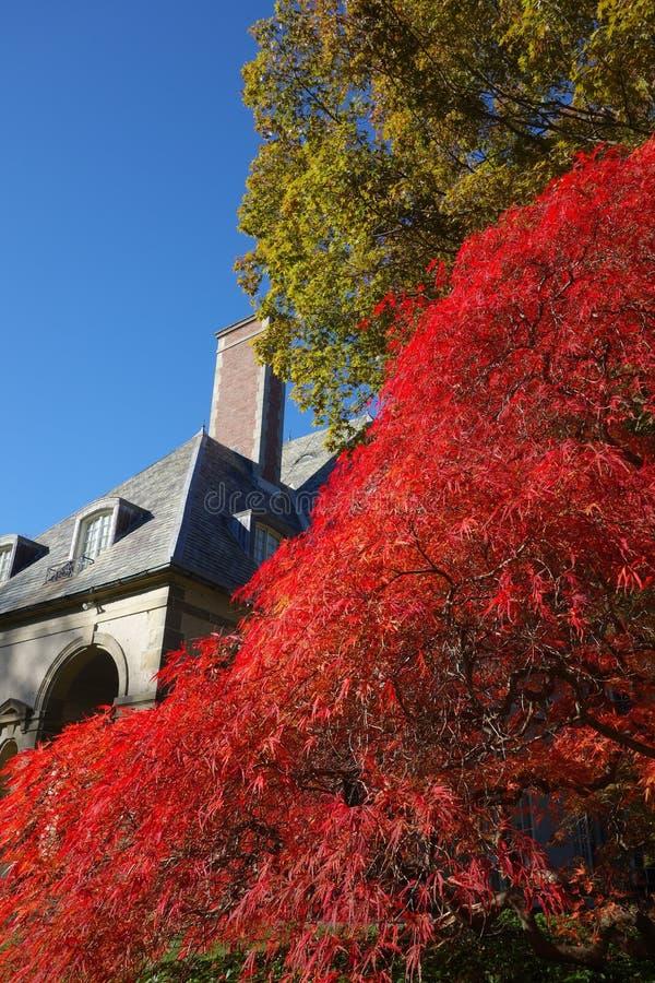 Giardini Rhode Island U.S.A. del palazzo fotografie stock