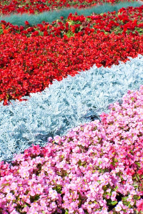 Giardini in Russia fotografie stock libere da diritti