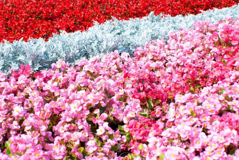 Giardini in Russia fotografie stock