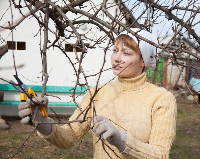 Giardiniere che fa il lavoro di manutenzione immagini stock