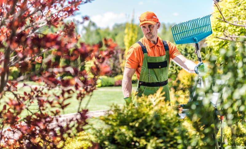 Giardiniere con il rastrello immagini stock