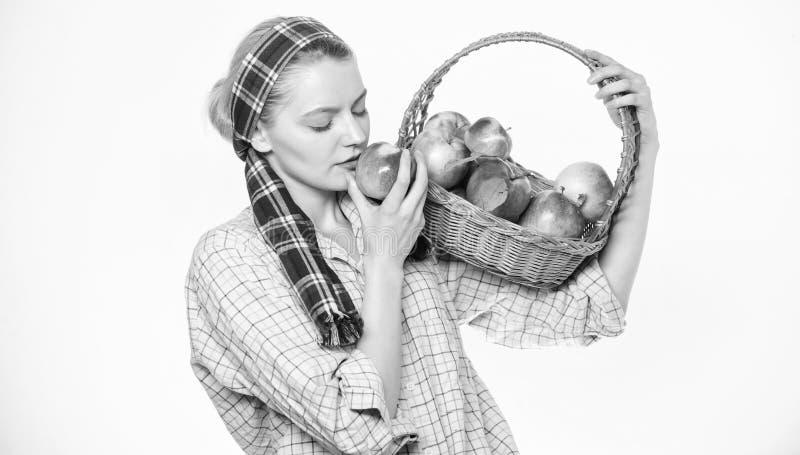 Giardiniere dell'agricoltore di signora fiero del suo canestro rustico della tenuta di stile del giardiniere della donna del racc fotografia stock