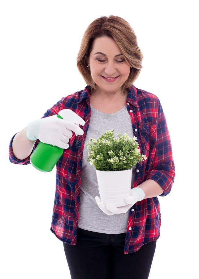 Giardiniere maturo della donna con la pianta in vaso e la bottiglia dello spruzzo d'acqua isolate su fondo bianco immagini stock