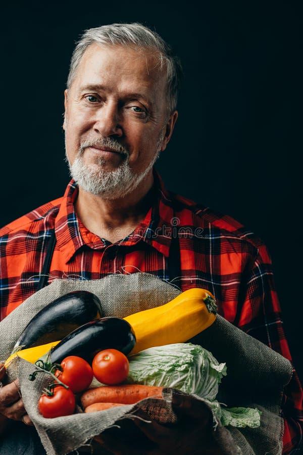 Giardiniere senior bello con le verdure fresche di caduta fotografie stock
