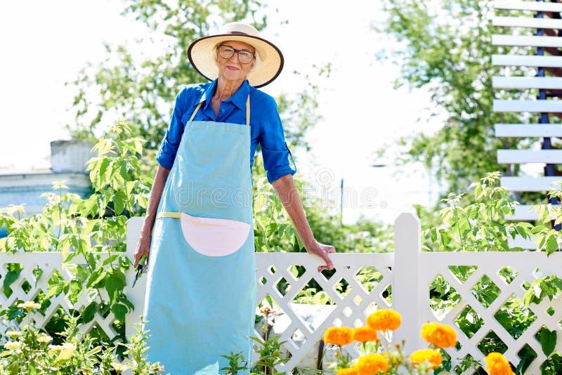 Giardiniere senior sorridente Posing immagini stock libere da diritti