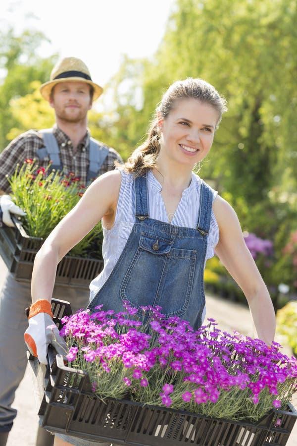 Giardinieri sorridenti che portano i vasi da fiori in casse alla scuola materna della pianta fotografia stock libera da diritti