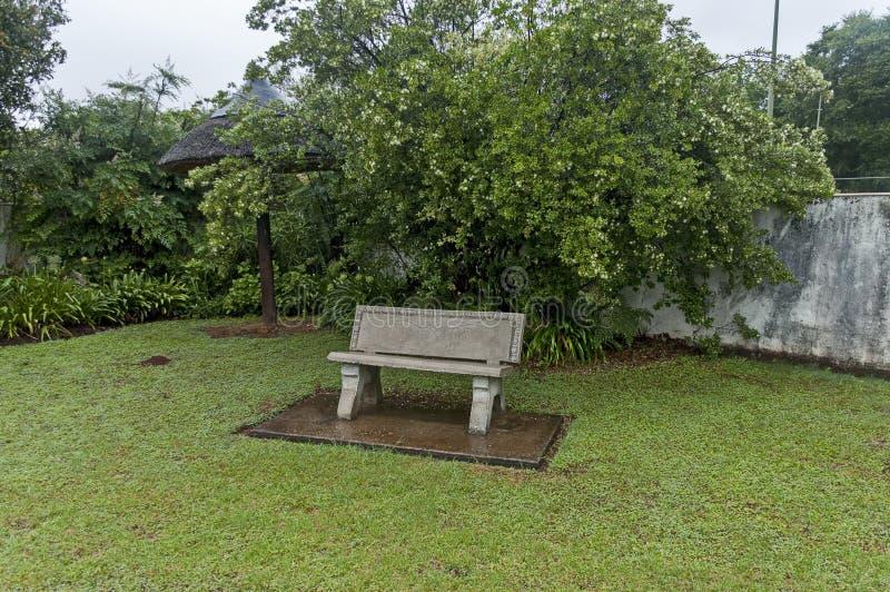 Giardino bagnato di mattina dopo la notte piovosa in Sabie fotografia stock