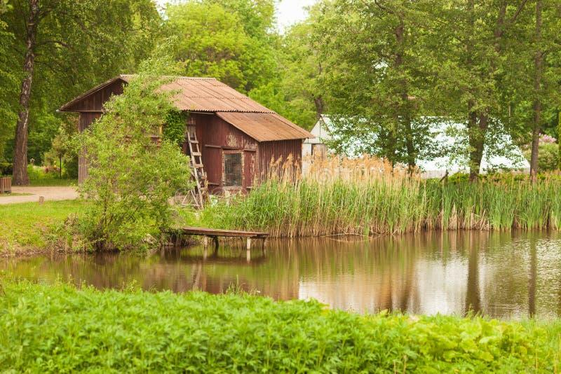Giardino botanico Canne nel vento e nella natura verde da un lago o da uno stagno con la casa e la serra di legno immagine stock