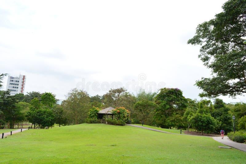 Giardino botanico di Singapore immagini stock