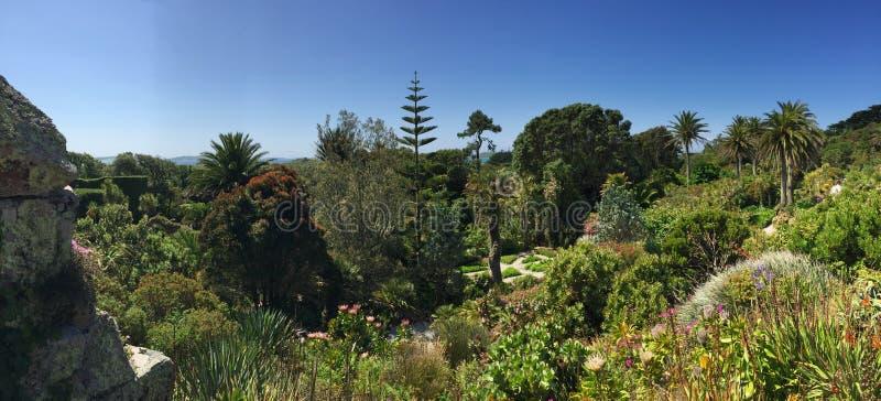 Giardino botanico di Tresco, isole di Scilly, Regno Unito fotografie stock libere da diritti