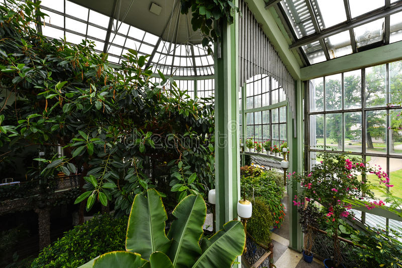 Giardino botanico, serra, Kretinga, Lituania fotografie stock libere da diritti