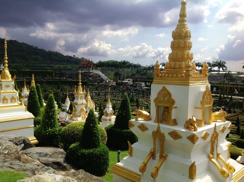 Download Giardino Botanico Tropicale Di Nong Nooch Immagine Stock - Immagine di botanico, turista: 55356323