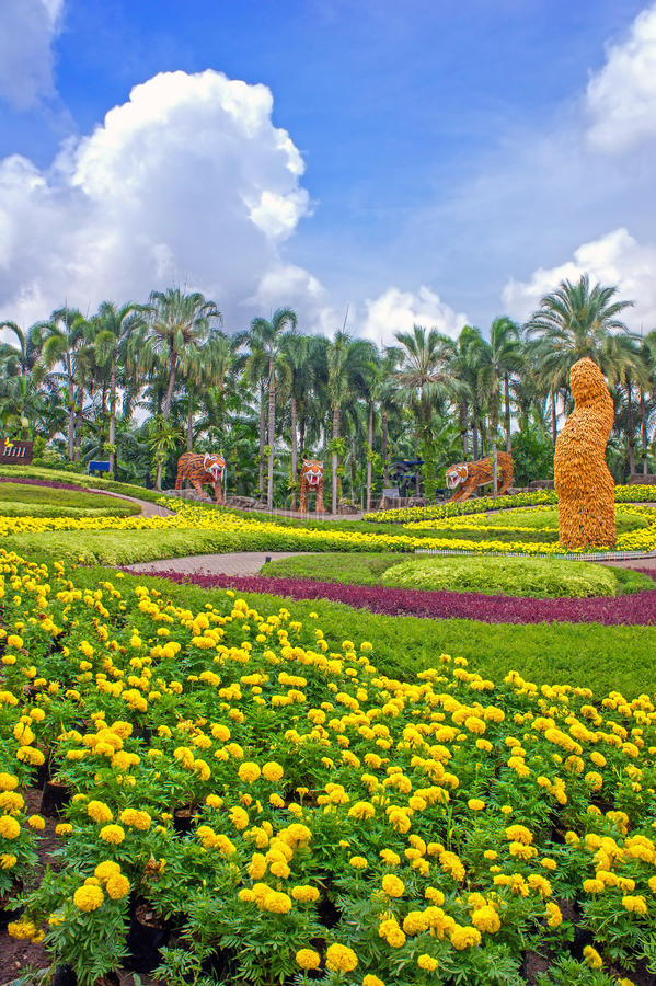 Giardino botanico tropicale di nong nooch pattaya - Giardino tropicale ...