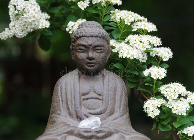 Giardino Buddha del cortile immagine stock libera da diritti