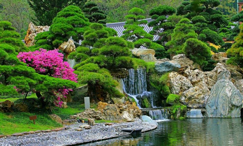 Giardino cinese di zen con la caduta dell 39 acqua e le for Giardino zen piante