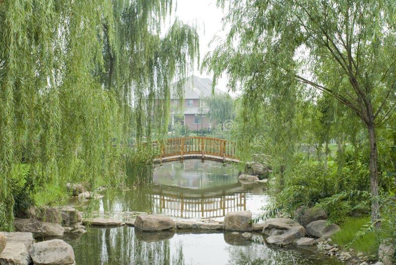 Giardino cinese tipico fotografia stock libera da diritti