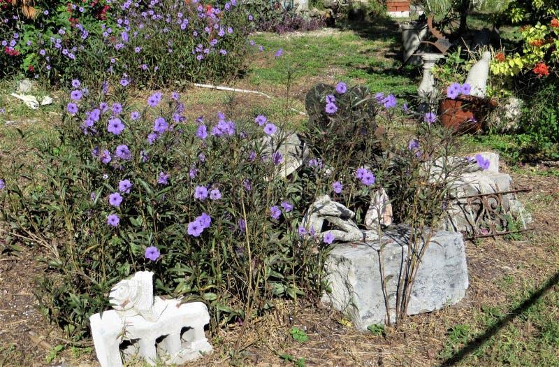 Giardino con i blocchetti di cenere ed i fiori porpora fotografia stock