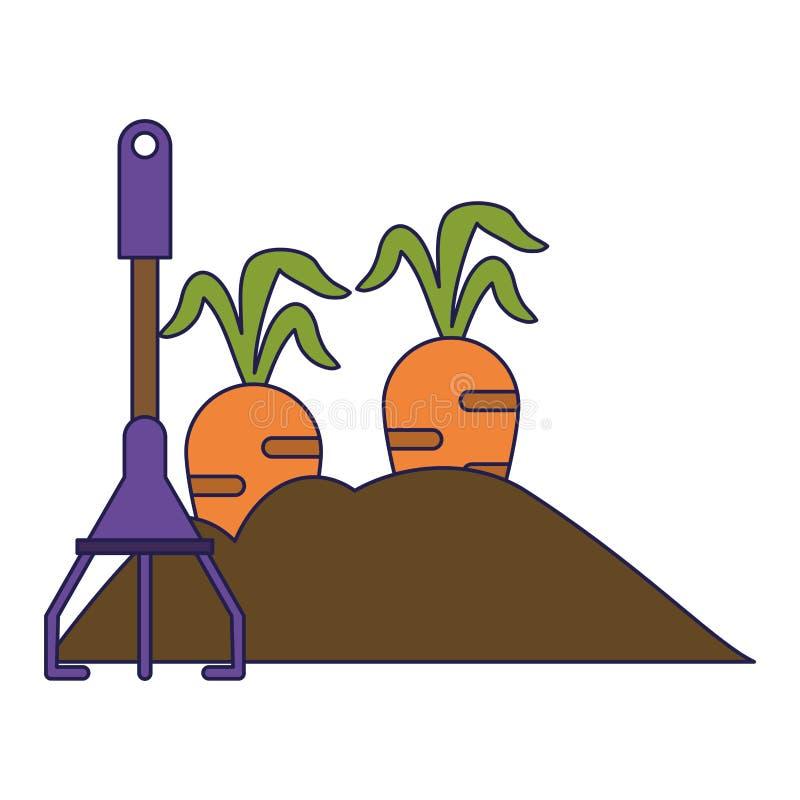Giardino con le carote e le linee blu del rastrello illustrazione di stock