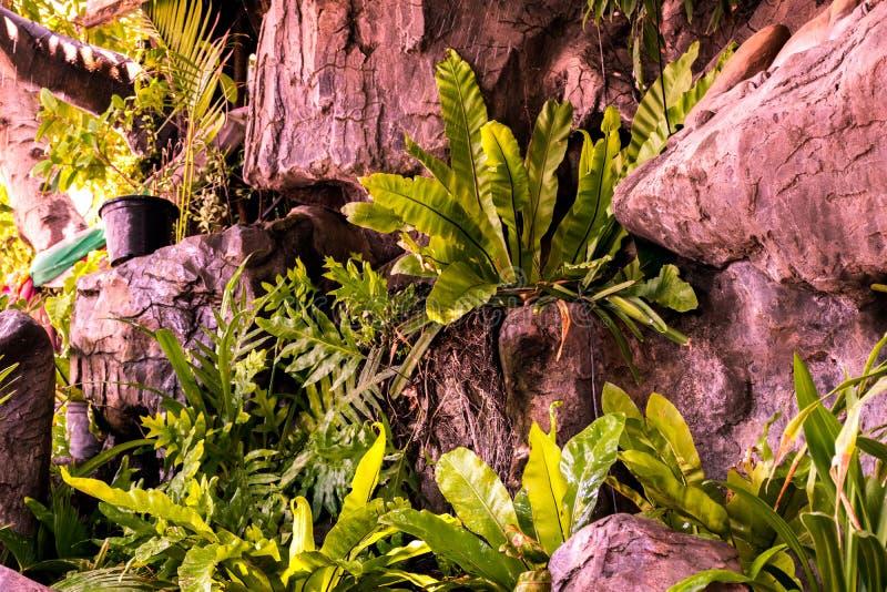 Giardino decorato con le pietre e gli alberi fotografie stock