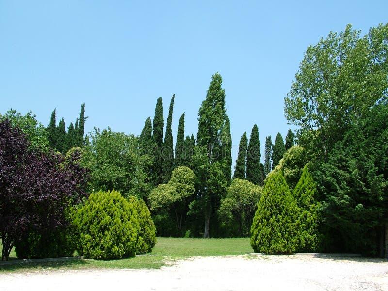 Giardino degli alberi fotografia stock immagine di paesaggio 5428372 - Prezzi alberi da giardino ...