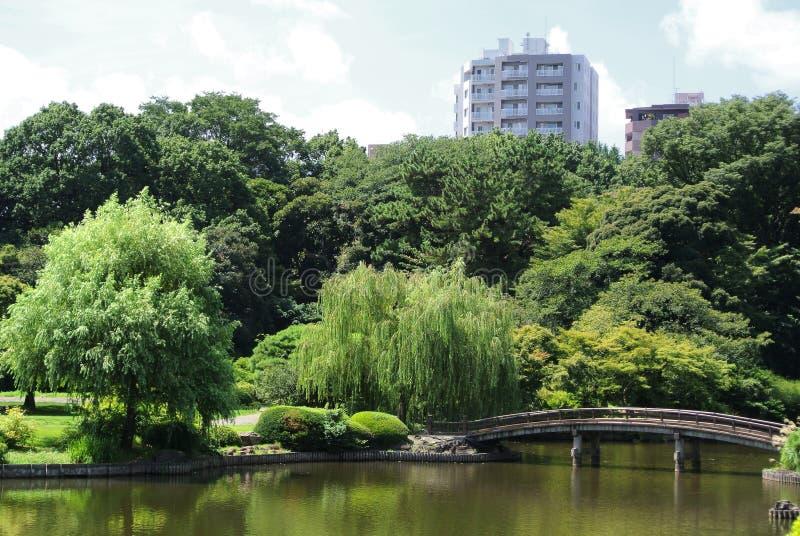 Giardino del cittadino di Shinjuku Gyoen fotografia stock