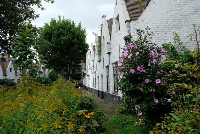 Giardino del cortile degli ospizi di carità di Meulenaere e di Saint Joseph, Bruges Bruges, Belgio fotografia stock libera da diritti