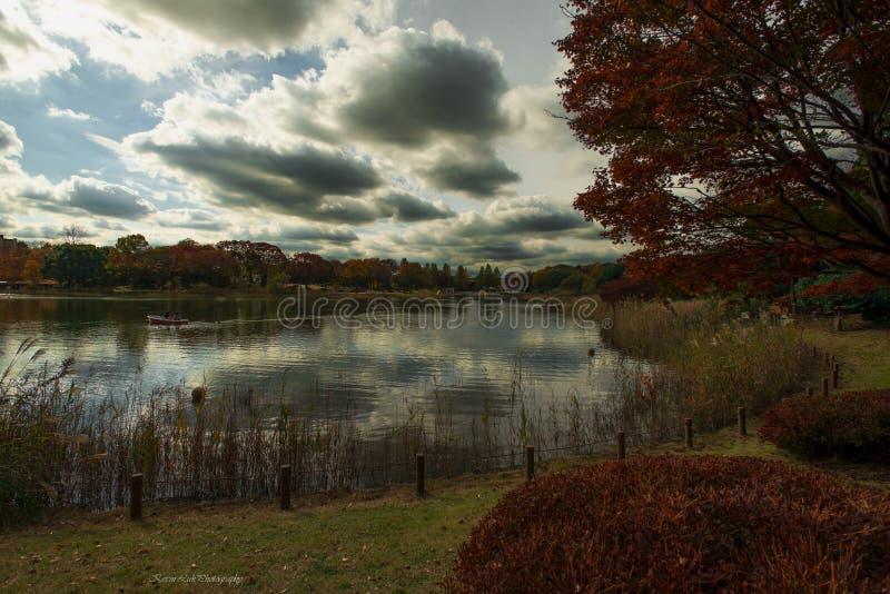 Giardino del Giappone - parco di Showa Kinen fotografie stock libere da diritti