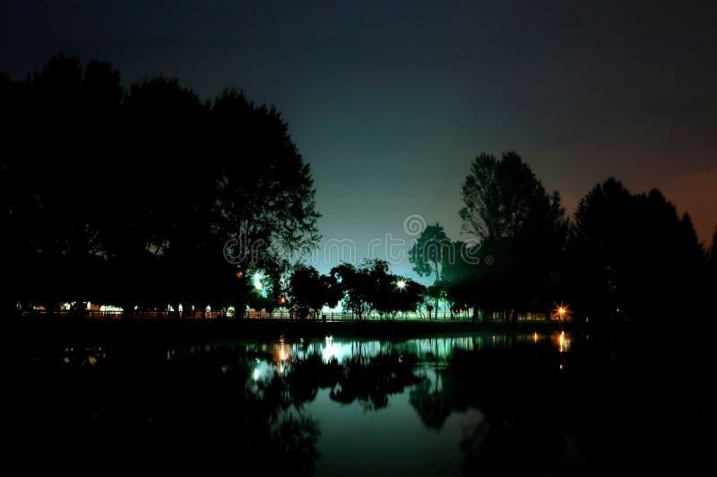 Download Giardino del lago fotografia stock. Immagine di albero - 216470