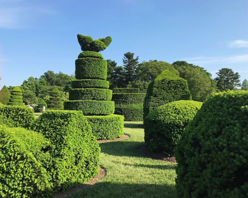 Giardino dell'ars topiaria ai giardini di Longwood in Pensilvania immagini stock libere da diritti