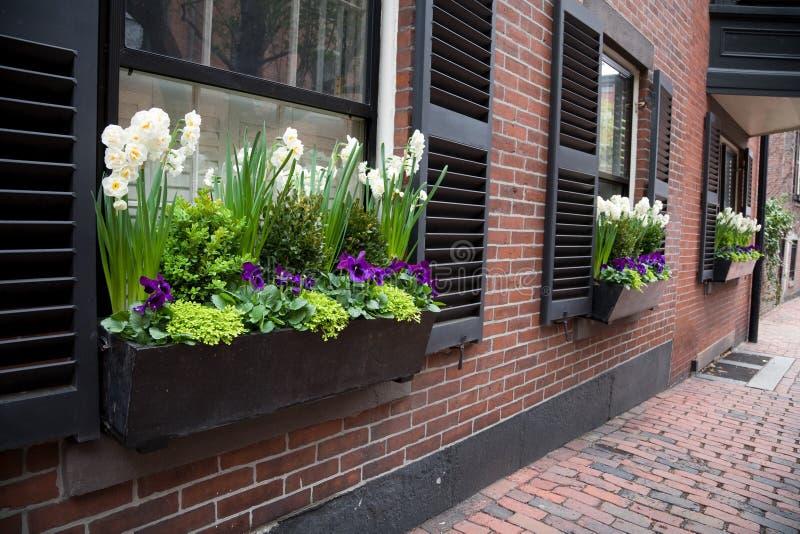 Giardino della finestra della città fotografie stock