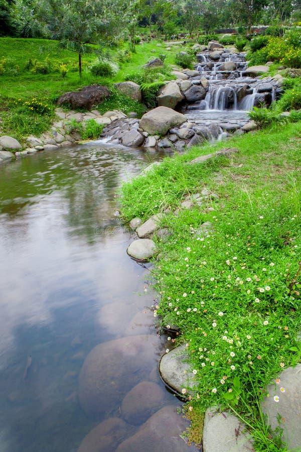 Giardino della natura con la piccola cascata della cascata fotografia stock libera da diritti