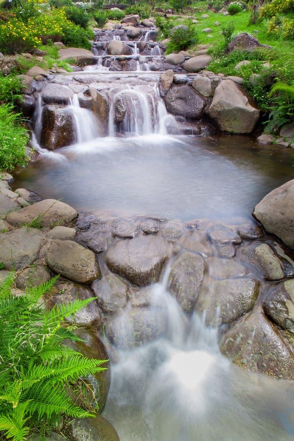 Giardino della natura con la piccola cascata della cascata immagine stock