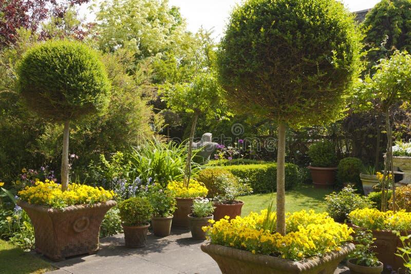 Giardino densamente piantato di estate fotografia stock