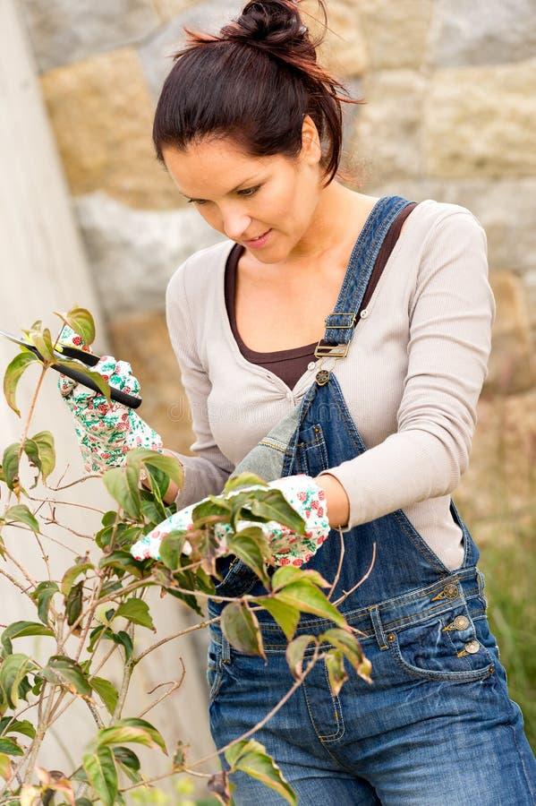Giardino di autunno del cespuglio dell'albero della potatura della giovane donna fotografia stock libera da diritti