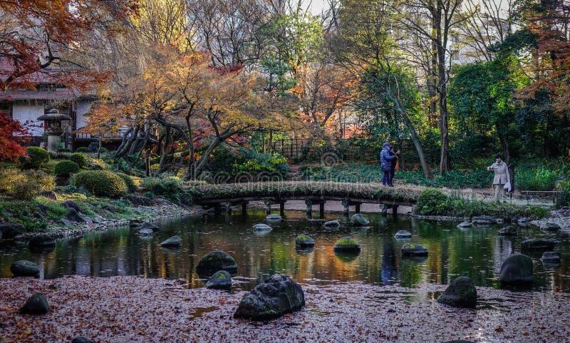 Giardino di autunno a Tokyo, Giappone immagine stock