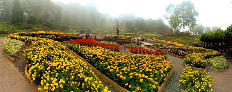 Giardino di Fahrenheit Luang di Mae fotografia stock