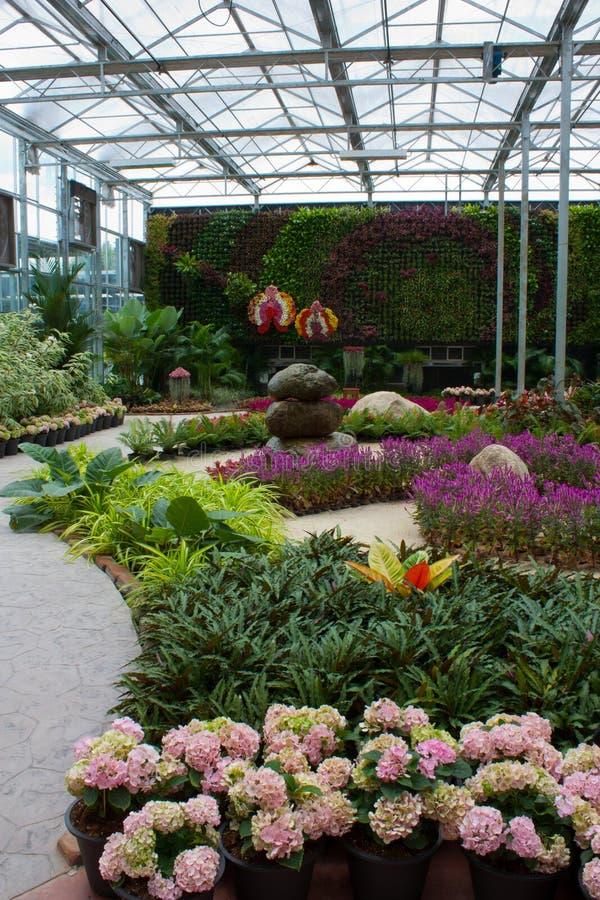 Giardino di fiore fotografia stock
