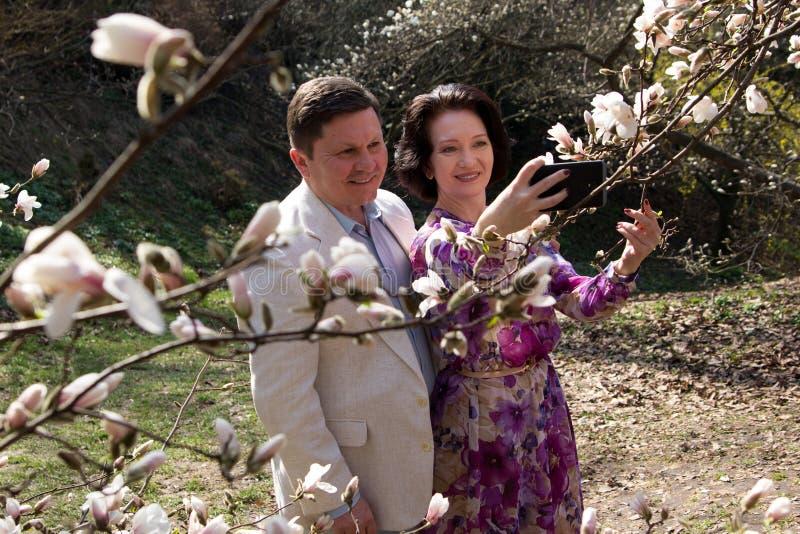Giardino di fioritura della magnolia della vera di amore di nozze della passeggiata molla anziana delle coppie fotografia stock libera da diritti