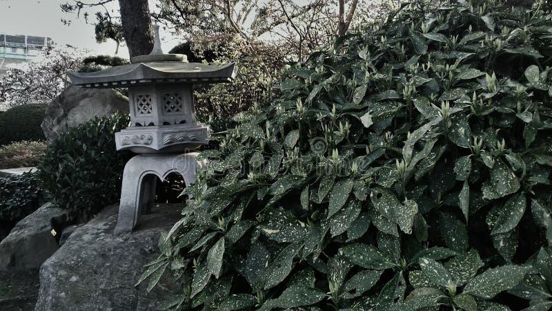 Giardino di Japanise fotografia stock