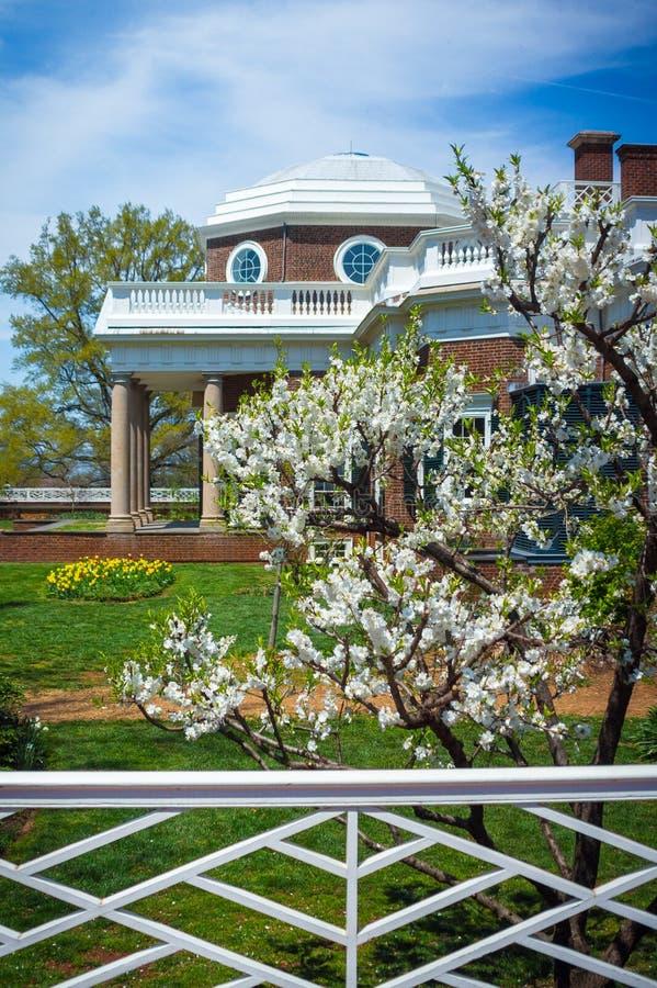 Giardino di Monticello ed albero di corniolo bianco fotografie stock libere da diritti