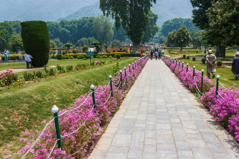 Giardino di Nishat, Srinagar, il Jammu e Kashmir immagini stock