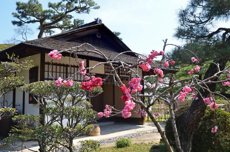Giardino di Shukkeien a Hiroshima centrale immagini stock libere da diritti