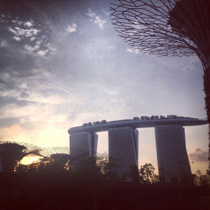 Giardino di Singapore dalla baia fotografia stock libera da diritti