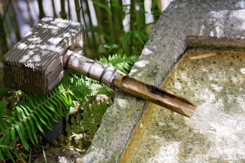 Giardino di stile giapponese, con il becco di legno di bambù, con acqua corrente, in una fontana di pietra fotografia stock libera da diritti