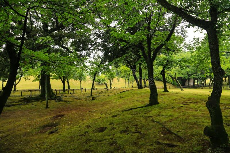 Giardino di Suizenji immagini stock libere da diritti