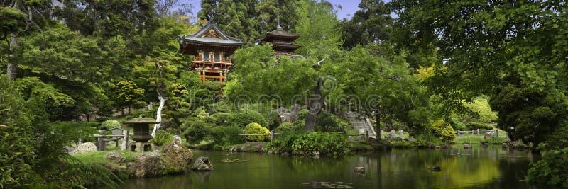 Giardino di tè giapponese panoramico fotografia stock