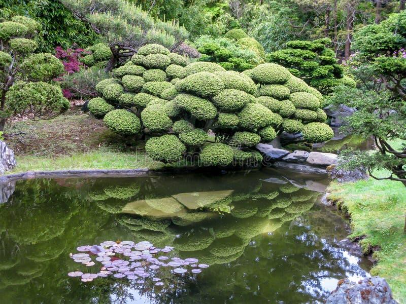 Giardino di tè giapponese a San Francisco fotografia stock