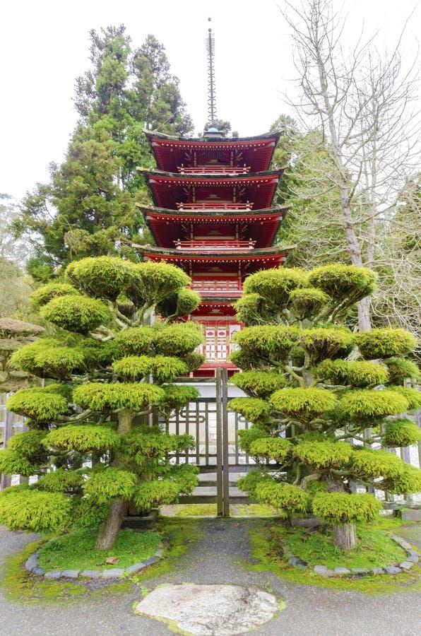 Giardino di tè giapponese, San Francisco immagini stock